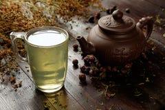 有杯子的茶壶草本治疗绿茶 免版税库存照片