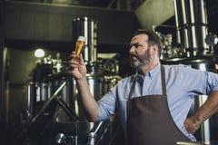 有杯的啤酒厂工作者啤酒 库存照片