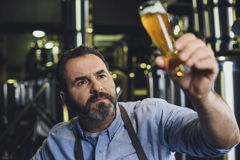 有杯的啤酒厂工作者啤酒 免版税库存照片