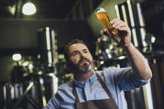 有杯的啤酒厂工作者啤酒 免版税库存图片