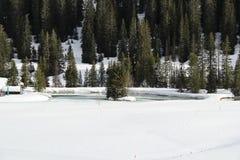 有松树海岛和雪的Winter湖 免版税库存图片
