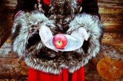 有板材和苹果冬天童话的妇女手 免版税图库摄影