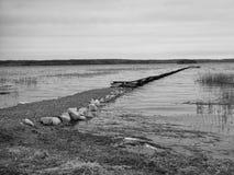 有板条的停泊处的湖 库存照片