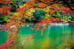 有枫叶树和小船的美丽的Arashiyama河 库存图片