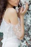 有柔和的眼睛构成充分的嘴唇的美丽的逗人喜爱的甜性感的女孩新娘在白光礼服在温暖的s的繁茂花园里走 免版税库存照片