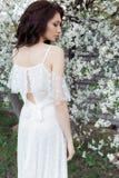 有柔和的眼睛构成充分的嘴唇的美丽的逗人喜爱的甜性感的女孩新娘在白光礼服在温暖的s的繁茂花园里走 库存图片