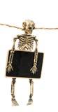 有标志的骨骼 图库摄影