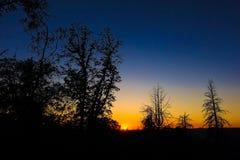 有树剪影的五颜六色的山脉日落 免版税库存照片
