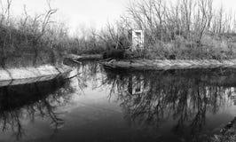 有树反射的池塘在水 库存图片