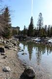 有树反射的路易丝湖 免版税库存照片