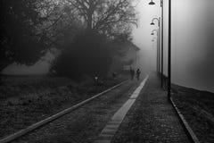 有树和人,有薄雾的w雾剪影的神秘的步行道路  免版税库存图片