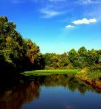有树和周围的叶子的萨加门多盐水湖 免版税图库摄影