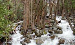 有树和岩石的优胜美地河 免版税库存图片