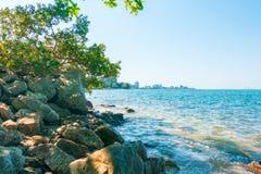 有树和岩石的风平浪静海洋 库存照片
