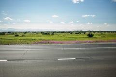 有树和柏油路的,蓝天绿色草甸 免版税库存图片