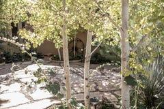 有树和树荫的一个松弛露台 免版税图库摄影