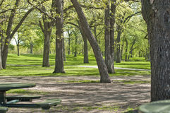 有树和野餐桌的室外公园 库存照片