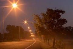 有树和雾的街灯 免版税库存图片