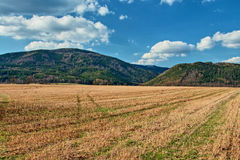 有树木丛生的山的亩茬地早期的春天在背景中 图库摄影