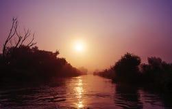 有树木繁茂的岸和sunsrise的河 库存照片