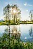 有树的反射的一个湖在它的 夏天晚上大局 免版税图库摄影