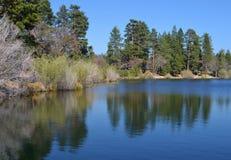 有树的反射的JENKS湖 库存照片