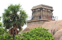 有树的寺庙 免版税库存照片