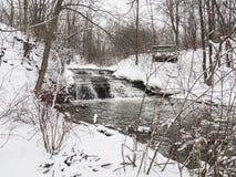有树的小河在冬天 免版税库存照片