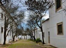 有树的小皇家道路和房子,并且,在末端,门 库存图片
