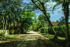 有树的小街道在Itamambuca,巴西 免版税图库摄影
