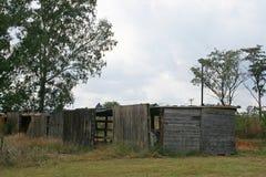 有树的木棚子 库存照片