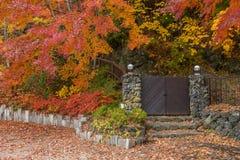 有树的木门房子在秋天 免版税库存图片