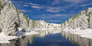 有树的河谷在冬天 免版税库存图片