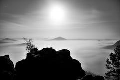 有树的海岛在有薄雾的海洋 在美丽的山的满月夜 从重的乳脂状的雾增加的砂岩峰顶 库存图片