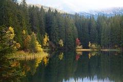 有树的海岛在秋天颜色有低Tatras背景 Demanovska谷的Vrbicke湖在斯洛伐克 免版税库存图片
