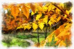 有树的秋天背景美丽的五颜六色的森林风景自然公园在水彩艺术风格样式 库存照片