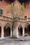 有树的美丽如画的小围场 免版税库存图片