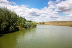 有树的美丽的夏天风景湖在边 库存图片