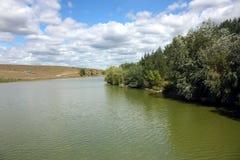 有树的美丽的夏天风景湖在边 免版税库存图片