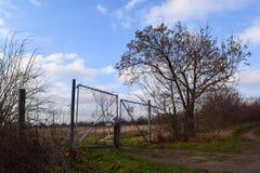 有树的老土气门 免版税库存照片