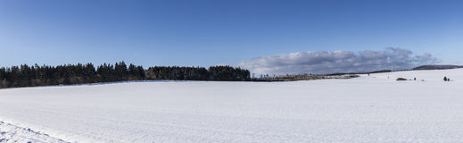 有树的风景冬天全景 免版税库存图片