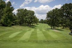 有树的高尔夫球航路在晴天 免版税库存图片