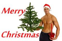 有树的年轻圣诞老人 免版税库存图片