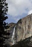 有树蓝天和白色云彩的优胜美地瀑布 免版税库存照片