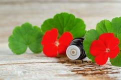 有根本香叶油的小玻璃瓶在老木背景 大竺葵叶子和花,关闭 库存照片