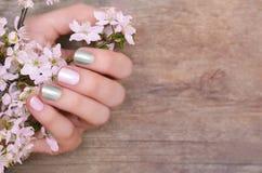 有桃红色和银色钉子设计的女性手 库存图片