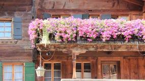 有桃红色喇叭花的老木阳台 免版税库存照片