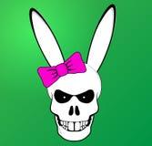 有桃红色弓的滑稽的复活节兔子头骨 库存图片