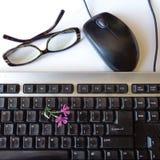 有桃红色春天花的键盘 图库摄影