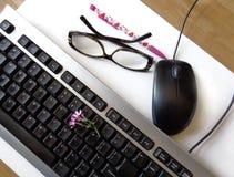 有桃红色春天花的,老鼠键盘 库存照片